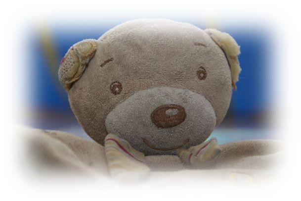 Teddy Tom Teddy Tom von babyFEHN   Juniors bester Freund